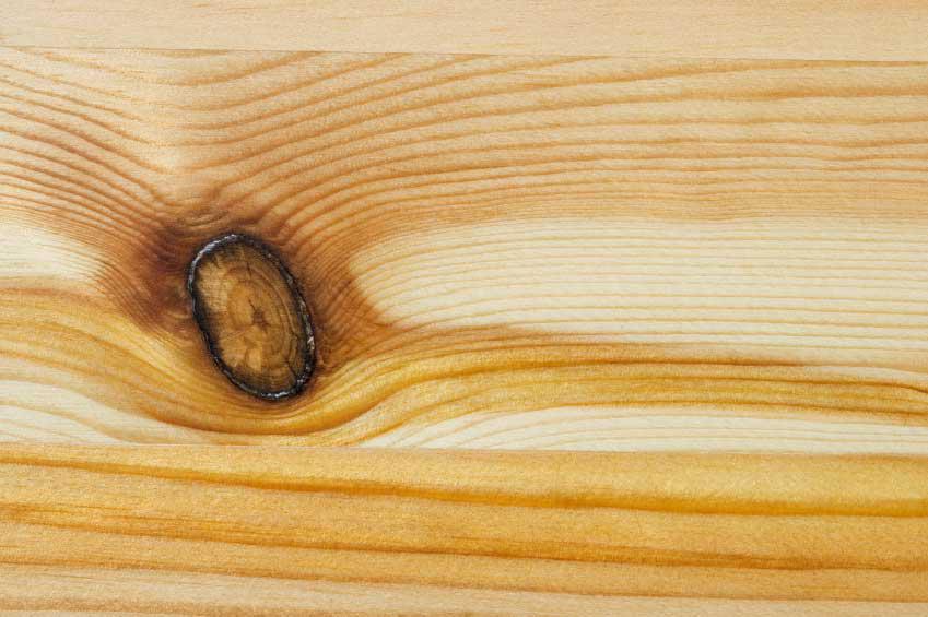 Chunk style knothole with good heavy bark and a small hole.